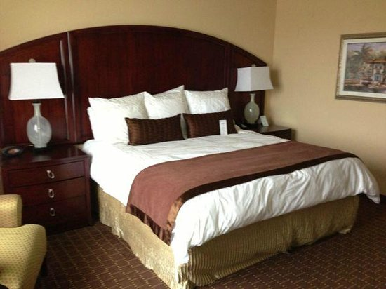 Buena Vista Suites: Super comfortable king size bed