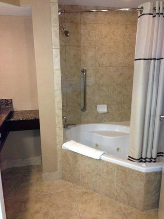 Buena Vista Suites: Very spacious bathroom with jacuzzi tub (King Suite)