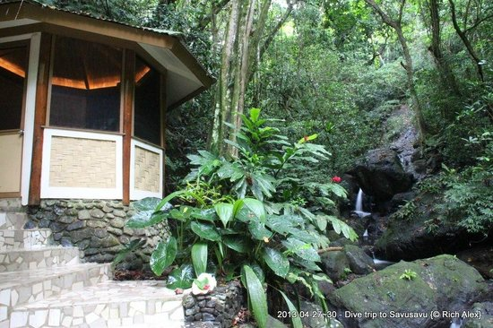 Koro Sun Resort and Rainforest Spa: The rainforest spa