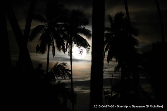 Koro Sun Resort: Watching the moonrise from my bure's patio