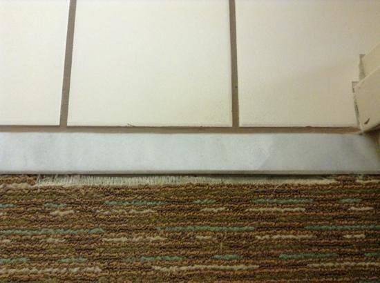 Hilton Garden Inn Atlanta Northpoint: carpet wear