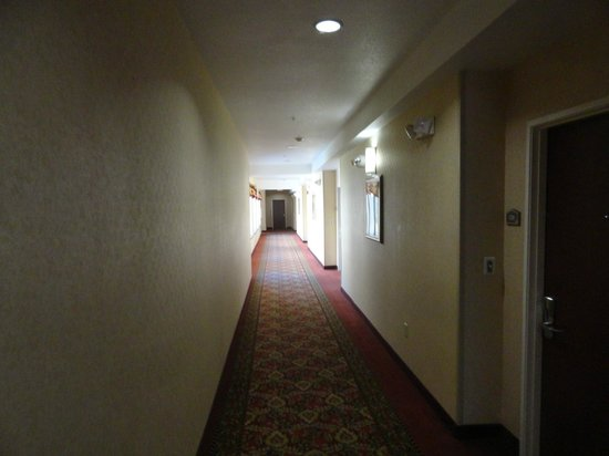 BEST WESTERN PLUS Hotel at the Convention Center: Pasillos