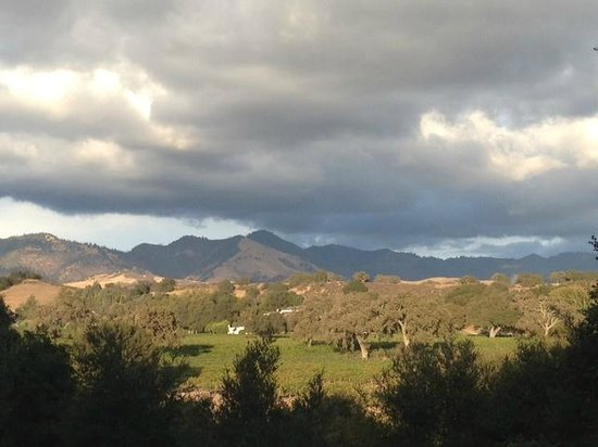 Los Olivos, Kalifornien: View from the drive way