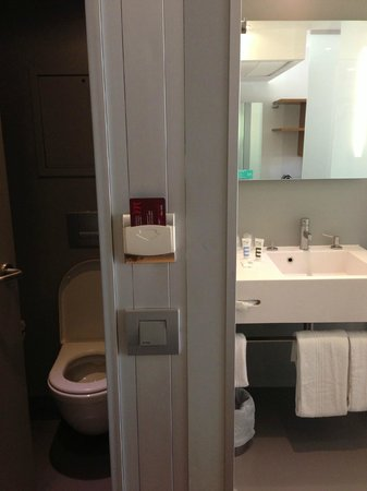 Mercure Paris Arc de Triomphe Etoile: WC and sink area