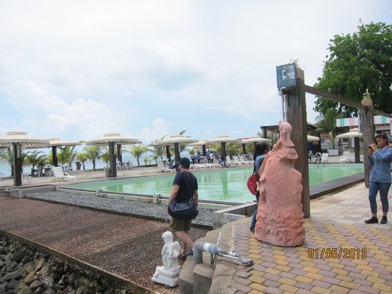 PT. KTM Resort - Batam: Not sure when they last washed the pool