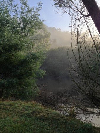 Yering, Australia: Morning fog over the river