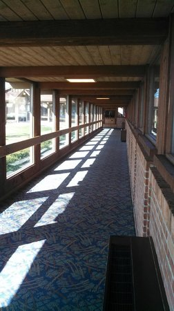 Lake Lawn Resort: Very cool glass hallways