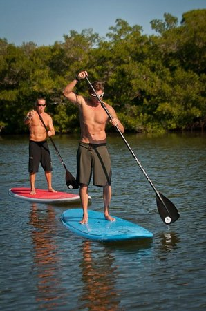 Placida, FL: Paddle Board
