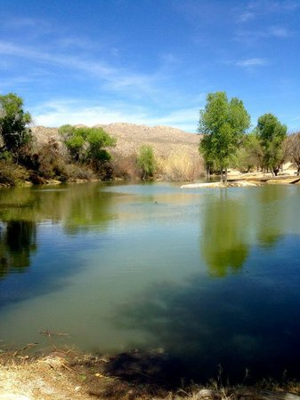 Tanque Verde Ranch: Gorgeous lake