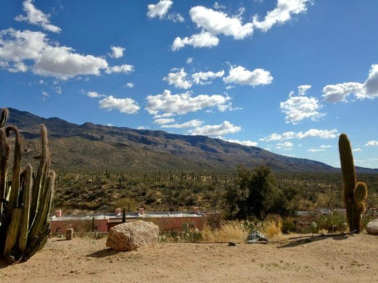 Tanque Verde Ranch: View from our Hacienda