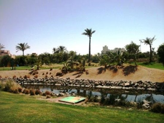 Steigenberger Al Dau Beach Hotel : golf