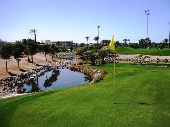 Steigenberger Al Dau Beach Hotel: golf