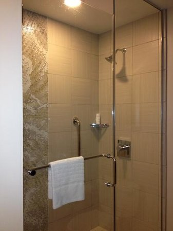 Courtyard New Orleans Downtown/Iberville: large shower (no tub)
