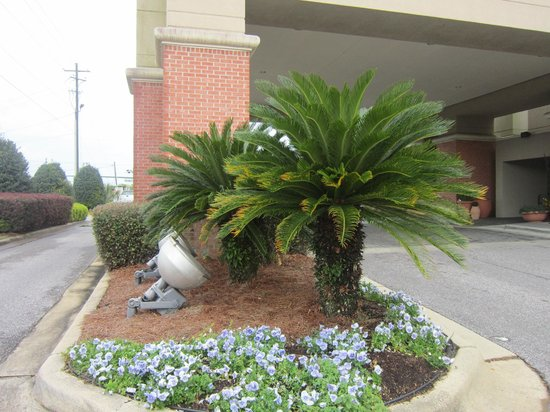 Hampton Inn Pensacola Airport (Cordova Mall Area): outside