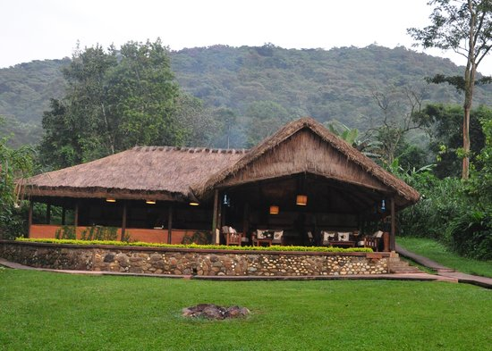 Sanctuary Gorilla Forest Camp: Main Building