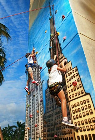 Sunscape Dorado Pacifico Ixtapa: Climbing wall