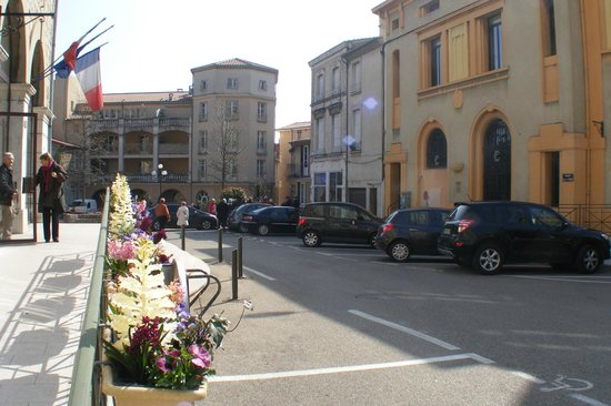 Tournon-sur-Rhone, Frankrig: Flowers in front of Town Hall
