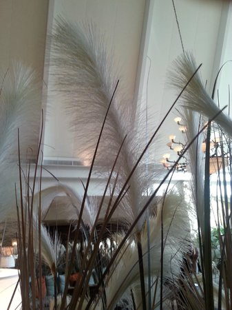 Marco Island Marriott Resort, Golf Club & Spa: Lobby Decor