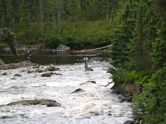 Experience wild and crazy brook trout fishing the way it use to be
