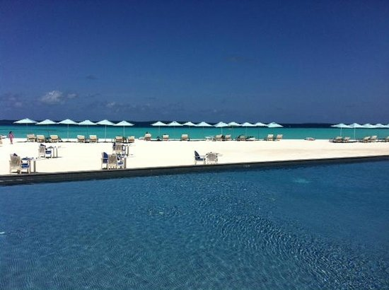 Four Seasons Resort Maldives at Landaa Giraavaru: one of the infinity pools