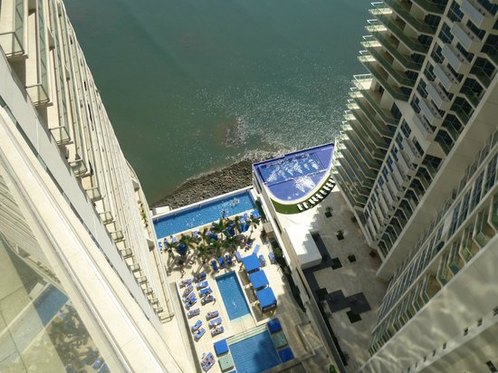 Trump Ocean Club International Hotel & Tower Panama: Piscine  vue du balcon de la chambre