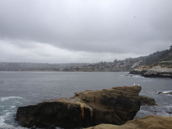 La Jolla Shores Hotel: Beautiful even on overcast