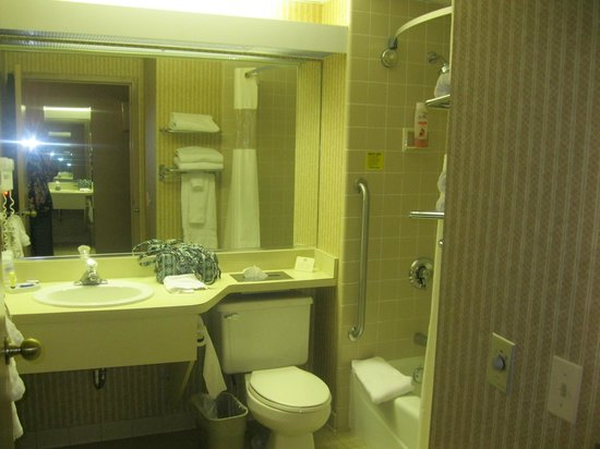 BEST WESTERN PLUS East Mountain Inn &amp; Suites: Bathroom