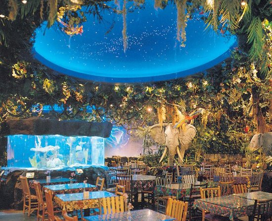 Crowne Plaza Niagara Falls - Fallsview: Rainforest Cafe