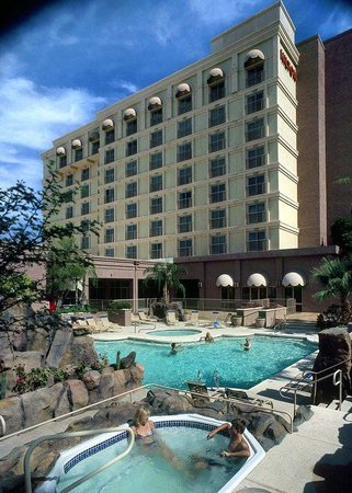 Hilton Phoenix East / Mesa: Swimming Pool