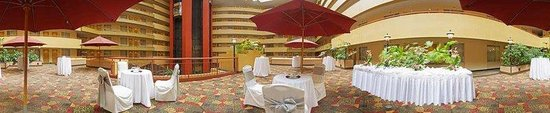 Embassy Suites Hotel Baltimore - Washington Intl. Airport: Terrace
