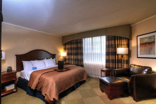 Embassy Suites Hotel Baltimore - Washington Intl. Airport: Presidential Suite