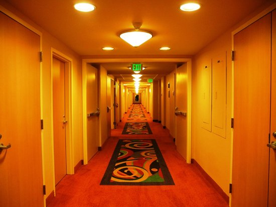 Crowne Plaza Orlando Universal: Corredor do hotel