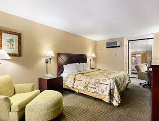 Days Inn &amp; Suites - Sea World/Airport: Standard King Bed Room