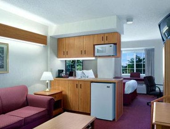 Microtel Inn & Suites by Wyndham Ann Arbor: Suite