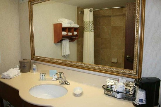 Hampton Inn Vero Beach: Bathroom Vanity