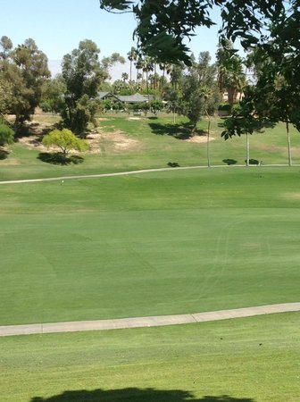 Rancho Las Palmas Resort & Spa: View