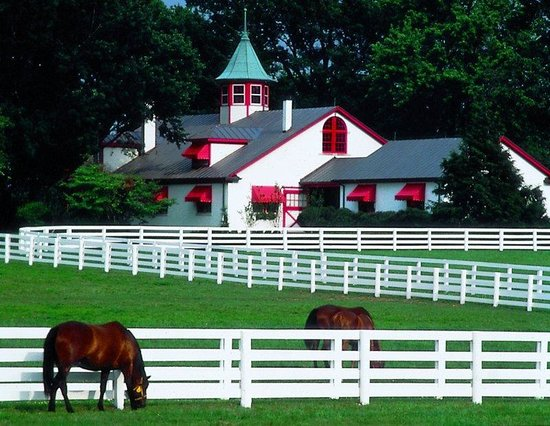 Embassy Suites Hotel Lexington: Kentucky Horse Park