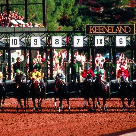 Embassy Suites Hotel Lexington: Racing at Keeneland
