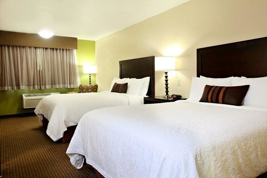 BEST WESTERN PLUS CottonTree Inn: Newly Renovated Double Queen