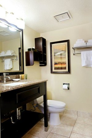 BEST WESTERN PLUS CottonTree Inn: Guest Bathroom
