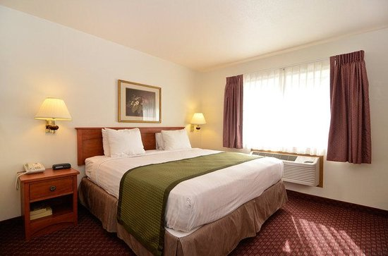 BEST WESTERN Newberg Inn: Regular room - King bed