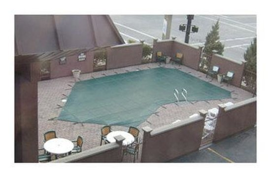Safari Inn Downtown: Pool