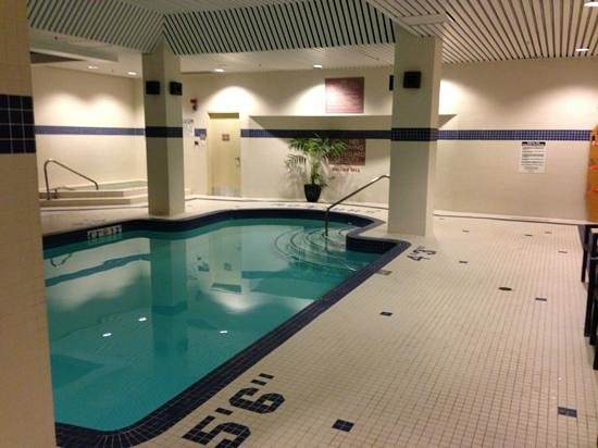 Hilton Garden Inn Toronto/City Centre: piscina