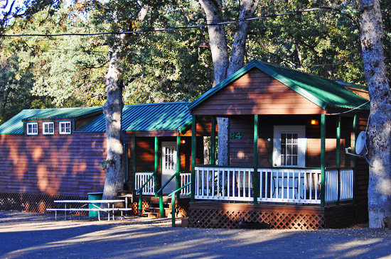 Yosemite Ridge Resort: Family Cabins
