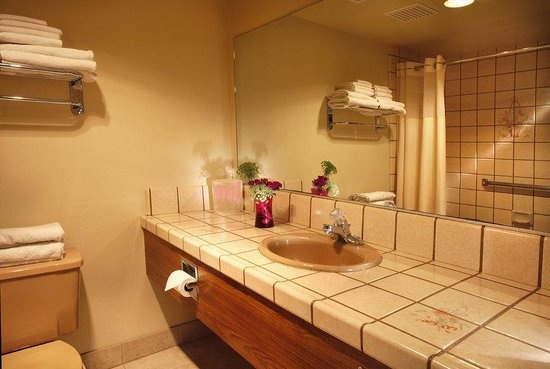 BEST WESTERN PLUS Yosemite Gateway Inn: Std Bath