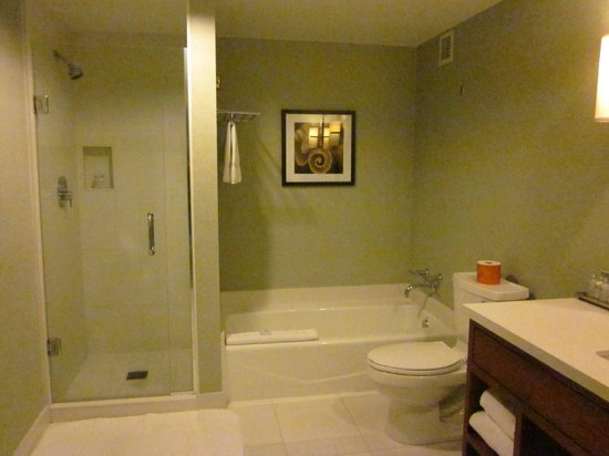 Loews Coronado Bay Resort : The bathroom!