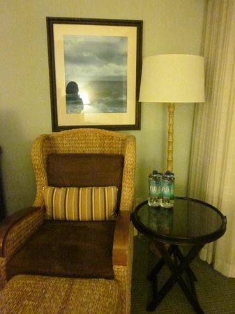 Loews Coronado Bay Resort : Lounge chair