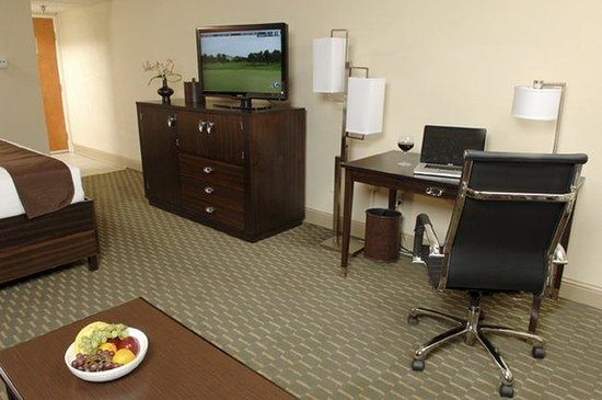 BEST WESTERN PLUS Atlanta Airport-East: Guest Room