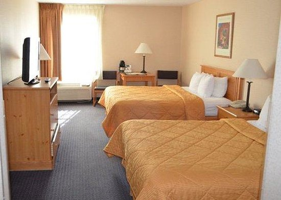 Comfort Inn : Guest Room 