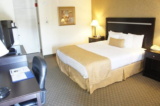 BEST WESTERN PLUS Pleasanton Inn: One Bed Guest Room